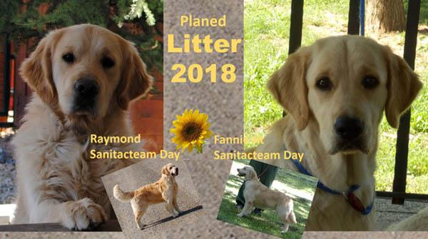 Planned Litters 2018